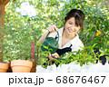 ガーデニングをする若い女性 撮影協力:三富今昔村 68676467