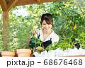 ガーデニングをする若い女性 撮影協力:三富今昔村 68676468
