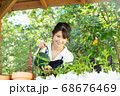 ガーデニングをする若い女性 撮影協力:三富今昔村 68676469