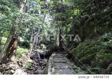 独鈷の滝への小道(兵庫県 丹波市) 68698720