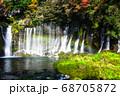静岡 白糸の滝 虹 紅葉 68705872