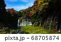 静岡 白糸の滝 虹 紅葉 68705874