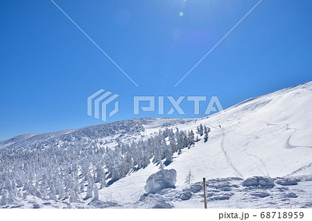 冬晴れの蔵王温泉スキー場と樹氷群 68718959