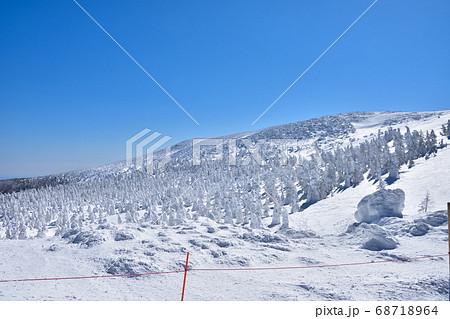 冬晴れの蔵王温泉スキー場と樹氷群 68718964