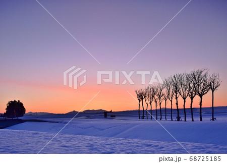 朝焼けの小千谷池ヶ原雪原のハサ木夜明け 68725185