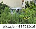 双葉郡双葉町 放置された車と伸び放題の樹木 68728016