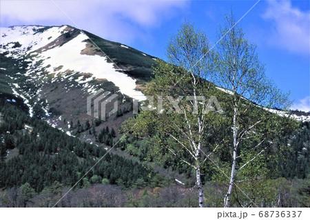 尾瀬国立公園の雄大な姿の至仏山と残雪 青空を背にして爽やかな春を演出 68736337