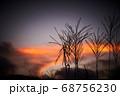 夕焼けとススキ 68756230