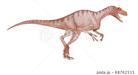 デルタドロメウス 白亜紀後期の肉食恐竜大型だが細身の体で動作は素早く、軽量のため足は速かった。 68762515