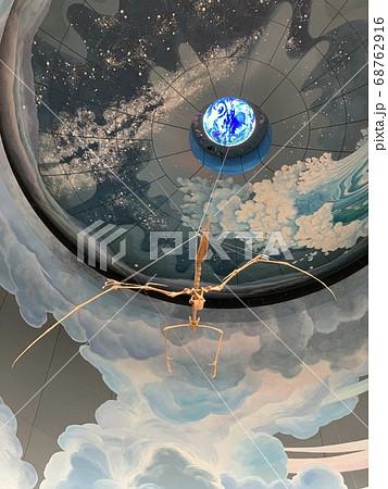 神奈川県立生命の星・地球博物館のプテラノドン 68762916