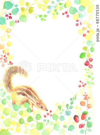 水彩で手描きしたどんぐりとリスのイラスト 68770530