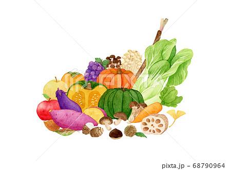 手描き水彩 秋の味覚 野菜と果物 イラスト 68790964
