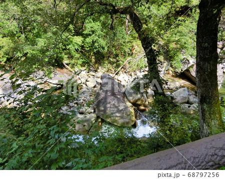 山梨県甲府市にある昇仙峡の荒川にある奇岩のオットセイ石 68797256