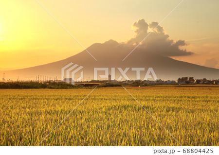 秋の収穫を迎えた田園風景と岩木山 68804425