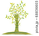 緑の木 68836603