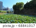北の丸公園・清水濠と竹橋のオフィスビル群 68841017
