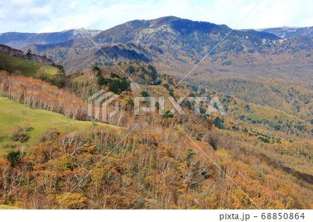 ビーナスライン三峰茶屋から秋の黄葉を眺望 68850864