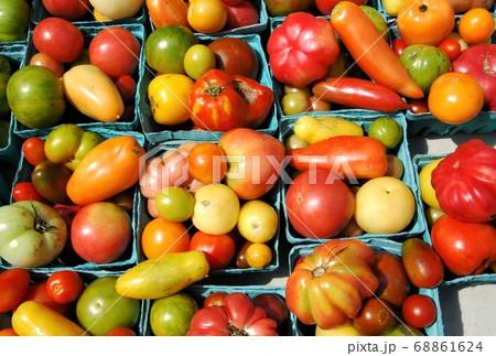 ニューヨークのファーマーズマーケットに並ぶオーガニックトマト 68861624