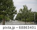 公園内の並木 68863401