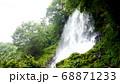 蓼科の乙女の滝 68871233