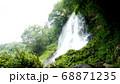 蓼科の乙女の滝 68871235