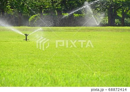 散水中の芝生(大阪城西の丸庭園にて) 68872414