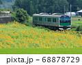 烏山線「ひまわり畑とアキュム」 68878729