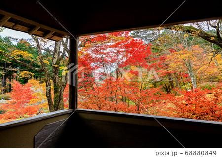 窓から見える美しい秋の風景 68880849