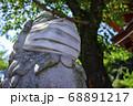 マスクをしている狛犬 目黒不動尊・瀧泉寺【クローズアップ】 68891217