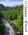 新緑の氷川渓谷遊歩道 北氷川橋から見る日原川 68896111