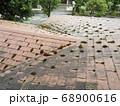 コロニアル屋根に苔は大敵です 68900616