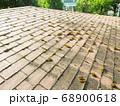 コロニアル屋根に苔は大敵です 68900618
