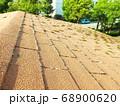 コロニアル屋根に苔は大敵です 68900620