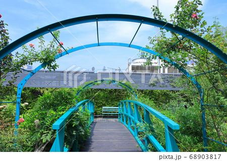 西武池袋空中庭園「食と緑の空中庭園」 睡蓮の庭 68903817