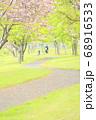 北海道蘭越町で撮影した八重桜の咲くサイクリングロード 68916533