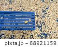 銀杏の落ち葉とベンチ 68921159