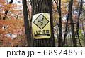紅葉した山中のハチ注意の看板 68924853