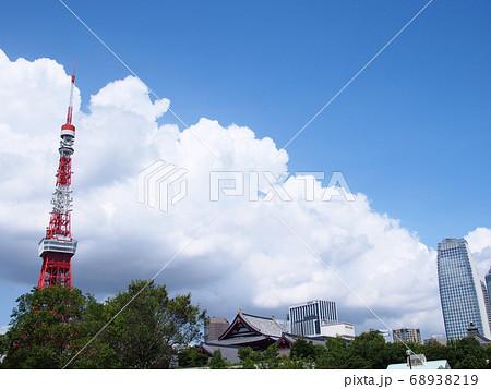 芝公園からの夏の空と東京タワー 68938219