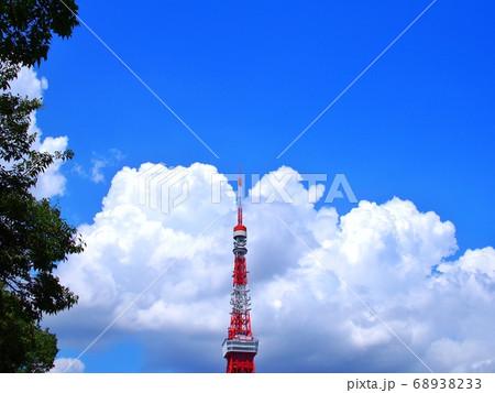 芝公園からの夏の空と東京タワー 68938233
