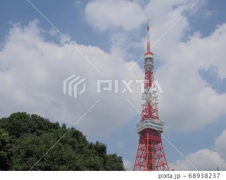 芝公園からの夏の空と東京タワー 68938237