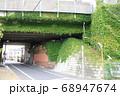 東京メトロ千代田線 荒川鉄橋の蔦  68947674
