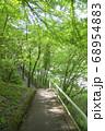 新緑の氷川渓谷遊歩道 日原川沿いの遊歩道 68954883