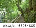 新緑の氷川渓谷遊歩道 日原川沿いの遊歩道 68954885
