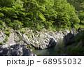 新緑の鳩ノ巣渓谷 谷底の岩が露出した多摩川の流れ 68955032