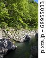 新緑の鳩ノ巣渓谷 谷底の岩が露出した多摩川の流れ 68955033