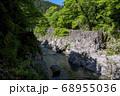 新緑の鳩ノ巣渓谷 谷底の岩が露出した多摩川の流れ 68955036