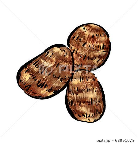 里芋の水彩のイラスト さといも 68991678