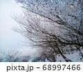 御在所岳山頂 並木道の雪景色と樹氷 68997466