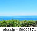 海  南国 リゾート 植物 69009371