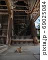 東大寺南大門と鹿 69025084